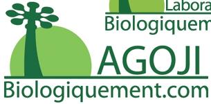 Les bienfaits du baobab bio et du goji bio pour le ventre