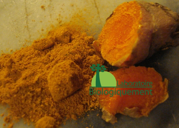 curcuma-agoji-anti-oxydant-naturel