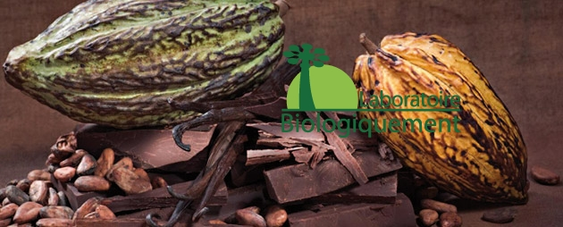 chocolat-agoji-Chocolat-antioxidant