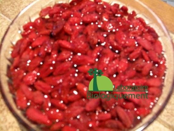 recette-canard-au-goji-naturel-himalaya-antioxydant-bio-3