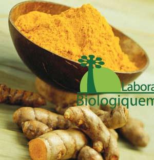 Le curcuma : un puissant antioxydant
